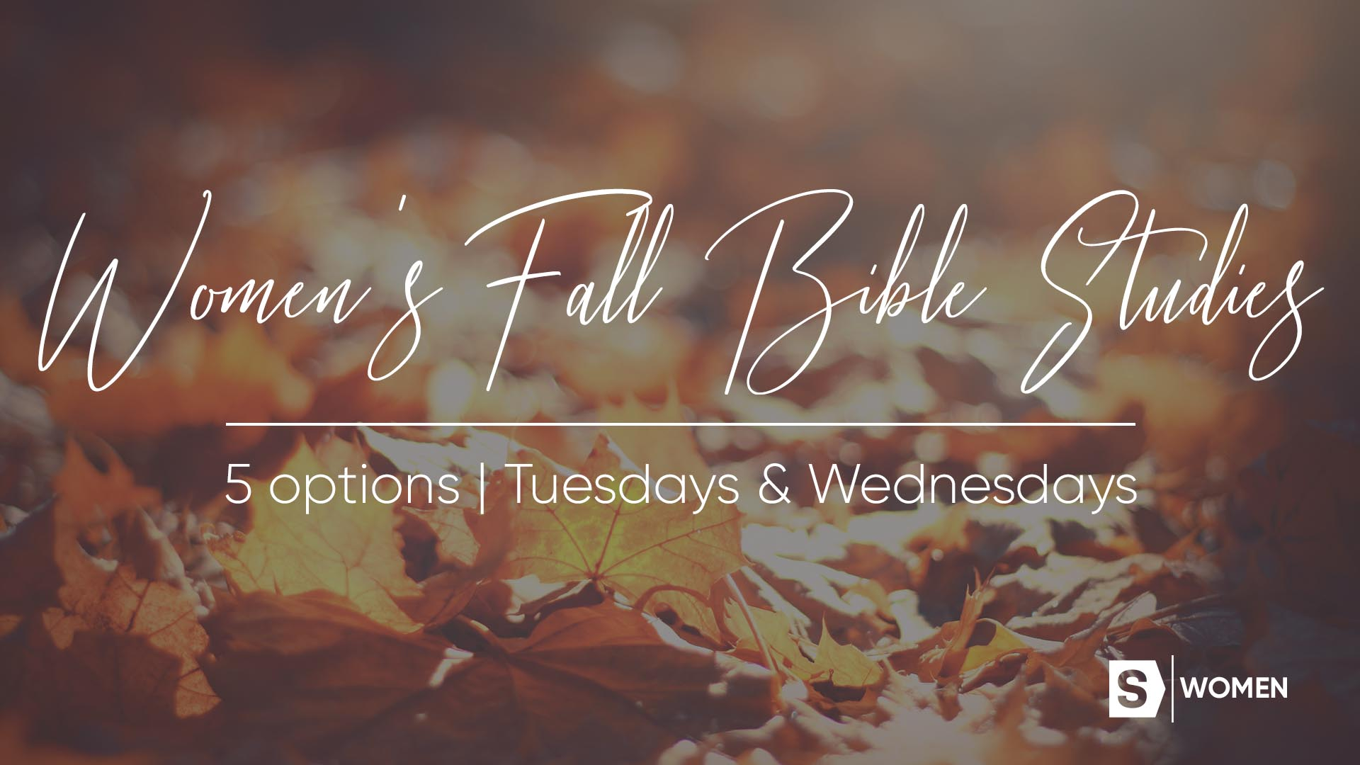 Women's Ministry Fall 2018 Bible Studies